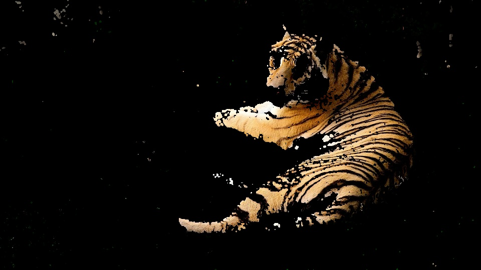tiger multi backprojection